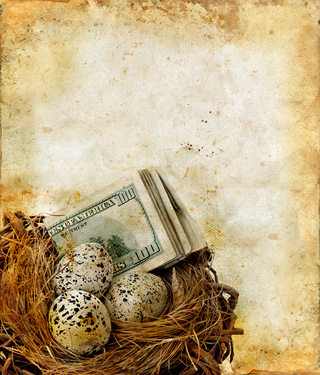 Bird nest with eggs and money on a grunge background