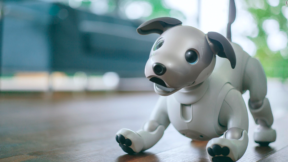 robot dogs and mental health