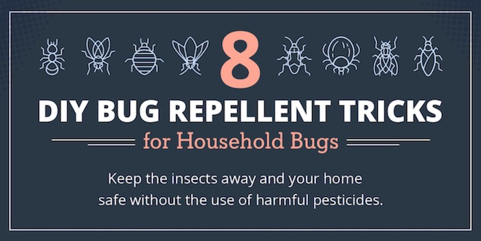 Featured image for Natural Bug Repellent Solutions