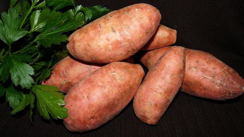 Featured image for sweet potato